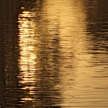 Wasser-Licht