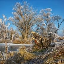 Landschaft, gefrostet